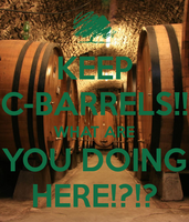 What are you Doing Here Barrels!? by LittleFlower23