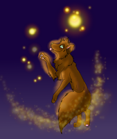 Fire flies by AccaliaKitsune
