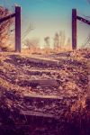 Stairs Up by parkertinsley