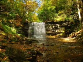 Ricketts Glen State Park 57 by Dracoart-Stock