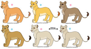 Cub adoptables :D - CLOSED by nycheefruit
