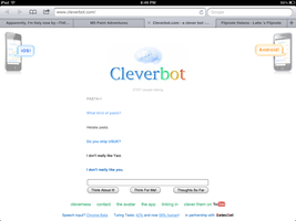 Cleverbot likes USUK by ThEpAnDaOfDoOm