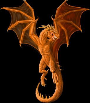 Copper Dragon by Shalie