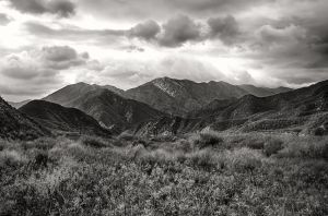 Angeles National Park by Recalibration