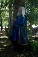 2014-08-13 Wizard in Blue 12 by skydancer-stock