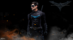Nightwing The Series by DavidCreativeDesigns