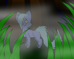 in the misty woods by HalloweenBerry