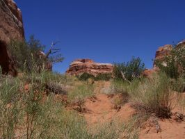 Arches 68 by Wiffink
