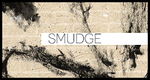 Smudge Brushes by SunshineResources