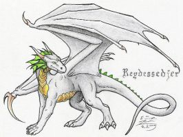 Reydessedjer by Paperiapina