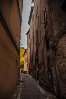 Roman alley by stevegek