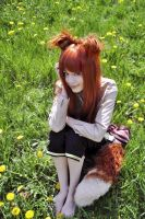Spice and Wolf - Horo by Kanra-sama