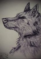 wolf by Bledhgarm