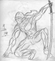 Ninja Awesome by MichaelBaue