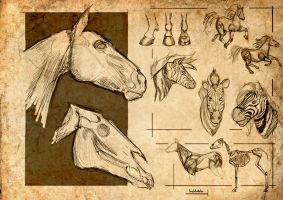 Horse Studies 1 by Inkdotdev