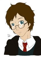 ITS HARRY POTTER by SaruwatariMiyako