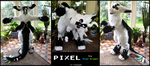 Pixel the Angel Dragon (fursuit) by TrelDaWolf