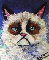 Grumpy Cat by teaspoonstudio