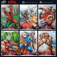 Ant-Man Sketch cards by shaotemp