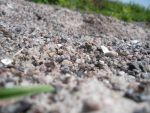 Pebbles on a shore by cleverlittleunicorn