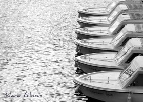 Lined up and ready to go! by Mark-Allison