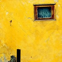 yellow by incolorwetrust