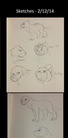 Sketches - 2.12.14 by BanditKat