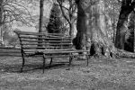 Lonely Chair by IgorsKrjukovs