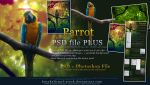Parrot PSD Plus Premium by kuschelirmel-stock