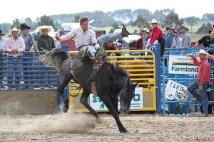 Taupo Rodeo 144 by Sooty-Bunnie