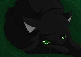 Hollyleaf- Who Am I? by Frosteh22