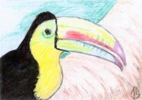 Sketch Card: Island Dreams - 3 by JasonShoemaker
