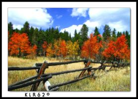 A Fall Day in Colorado by KLR620
