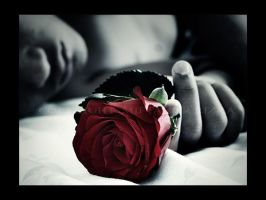 Roses for the dead II. by frixin
