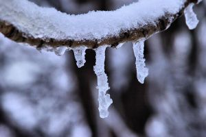 Hanging Ice by digitalpix4all
