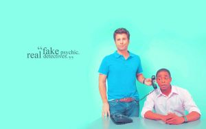 Psych Widescreen Wallpaper IV by EpicActress