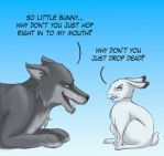 Wolf and rabbit by uppuN