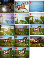 Step by Step Horse Painting by calzephyr