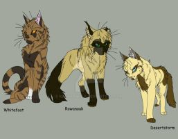 Warrior Cats Group 2 by KasaraWolf