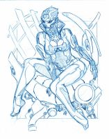 TORINTH COMMISSION PENCILS by stalk