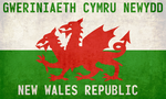NWR - Flag of the New Wales Republic by Martin23230