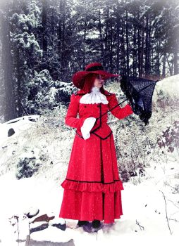Red Amongst the Snow I by Breaking-Dawn998