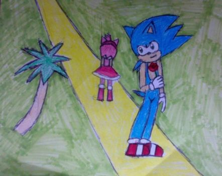 Sonic And Amy The Shining Road by xsamxthexhedgehogx