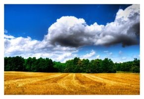 After Harvest by Riffo