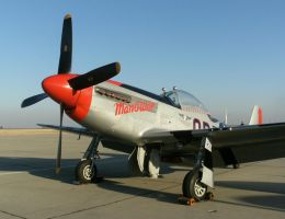 North American P-51 Mustang by finhead4ever