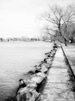 Walk around the Lake Balaton by Noncsi28