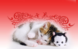 Kitten and friend by BrokenWallpapers