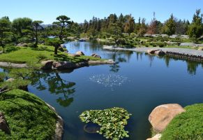 Japanese Garden 029 by Gary--T