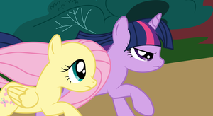 Fluttershy and Twilight Vector by PaulySentry