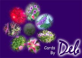Cards by Deb banner by drkdsgn
